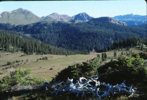 Weninuche Landscape