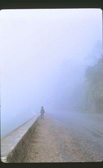 Misty Walk - Bogota