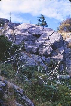 Monhegan Landscape