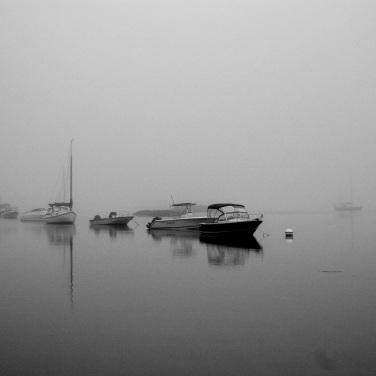 Maine fog